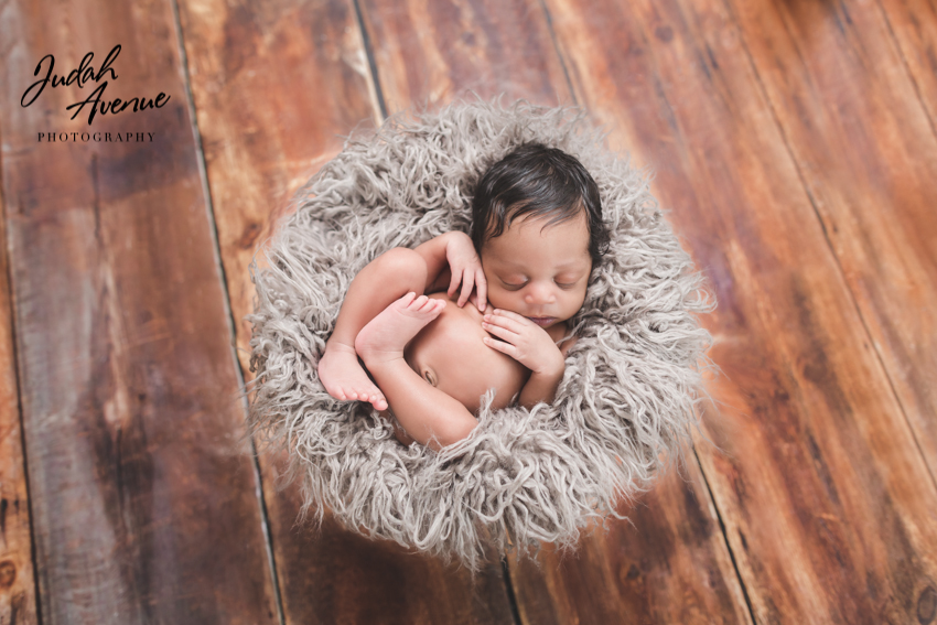 Newborn photographer in long island city